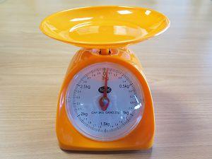 三公斤秤:塑膠磅(2016) : Scales : 3 kg