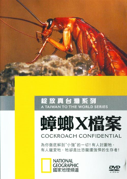 蟑螂X檔案