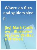 Where do flies and spiders sleep